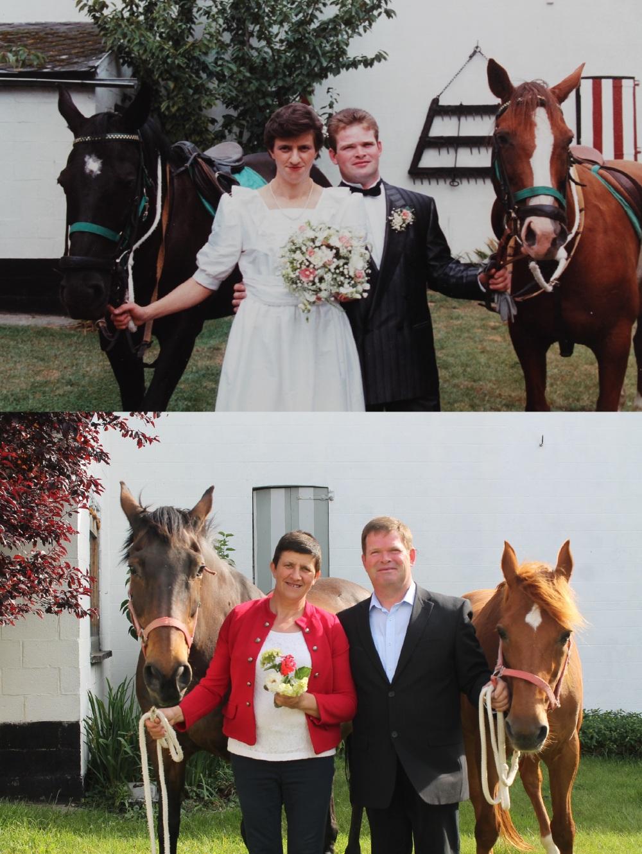 Vroeger en nu paard